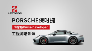 PORSCHE保时捷专家版piwis-developer工程师培训课程