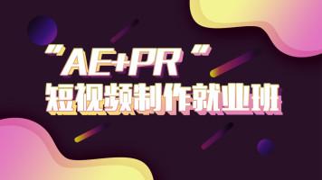AE+PR动效制作就业班【君虹出品】