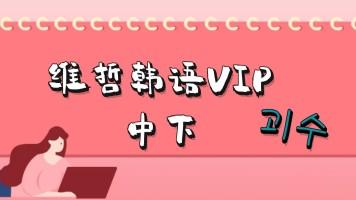维哲韩语VIP系统班中级下