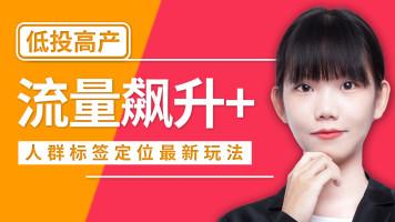 【爆款】2019年淘宝开店运营技巧免费流量爆发新思路【齐论】