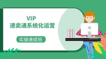 【创迹】跨境电商运营速卖通实战操作速成班VIP系统化特训营
