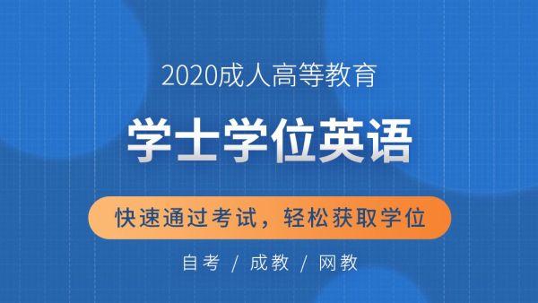 2020年成人学位英语(自考、成教、网教)