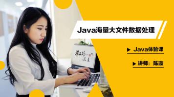 Java体验营:Java海量大文件数据处理