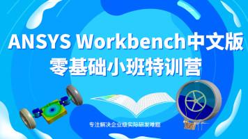 ANSYS Workbench中文版小班直播特训营