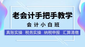 2019真账实操+税务实操+纳税申报+汇算清缴(会计小白班)老会计
