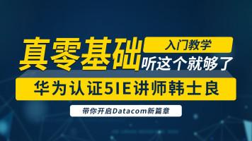 华为HCIA-Datacom基础课及习题讲解/HCIP/HCIE
