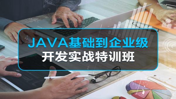 JAVA基础到企业级开发项目特训班