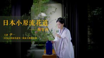 花艺 | 日本小原流花道初等科,让你的居家环境不一样