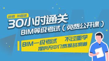 30小时通关BIM等级考试免费公开课