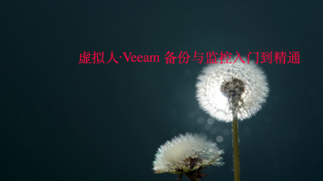 虚拟人·Veeam 备份与监控入门到精通