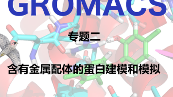 GROMACS专题二:含有金属配体的蛋白建模和模拟