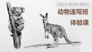 动物速写入门—体验课【重彩堂教育】