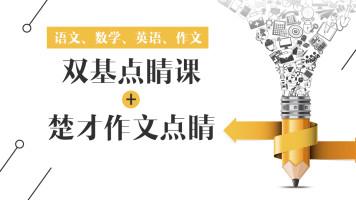 2019年江岸区双基点睛课+楚才作文点睛