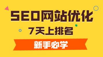 SEO网站优化0基础学习|SEO上排名网赚赚钱|seo新手基础课