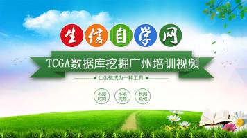 TCGA数据库Cox分析GZ培训课程