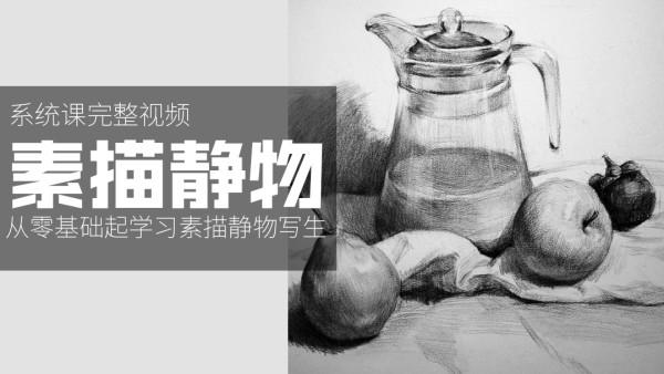 【系统视频】素描静物系统课程视频可自学【合尚教育】美术绘画