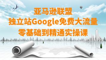 亚马逊联盟独立站Google免费大流量零基础到精通实操课