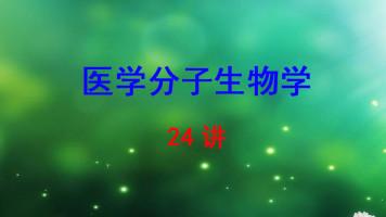 中南大学 医学分子生物学 刘静 24讲