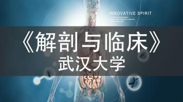 《解剖与临床》_武汉大学