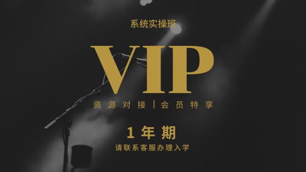 VIP电商运营实操班
