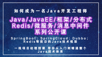 Java/JavaEE/框架/分布式/Redis/微服务/消息中间件-系列公开课