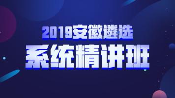 2019安徽遴选系统精讲
