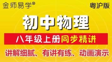 金师易学初中物理沪粤视频初二物理同步视频八年级上册粤沪版物理