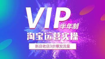 【高级VIP】付款链接/淘宝店铺实操入门-半年制