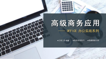 五彩石 商务办公应用软件——Office系列