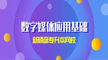 天津专升本-新硕彦教育-数字媒体应用基础(录播课)