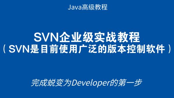 SVN企业级实战教程