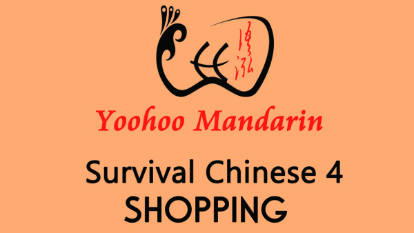 Survival Chinese 4---Shopping
