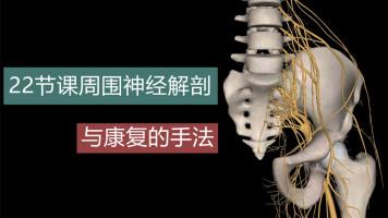 22节课搞懂周围神经解剖与康复手法