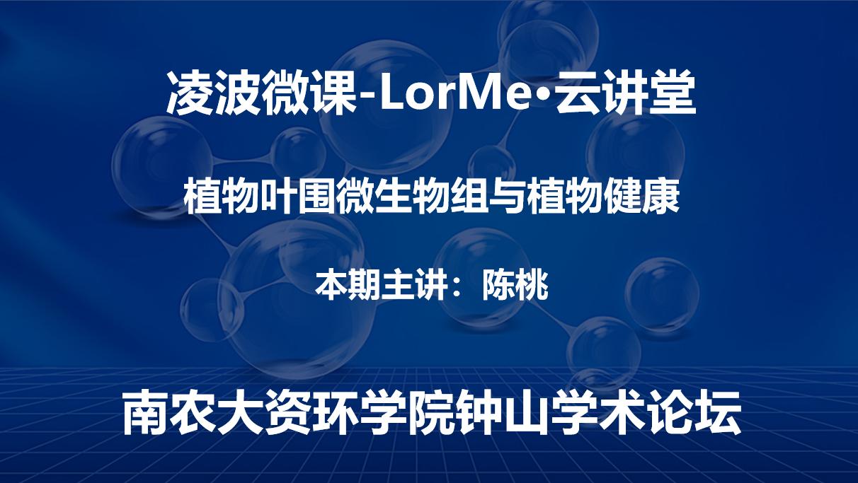 凌波微课-LorMe云讲堂第十六讲