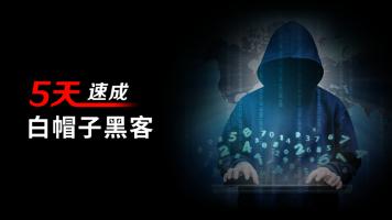 5天速成白帽子黑客(Web安全/渗透测试/白帽子黑客/网络安全)
