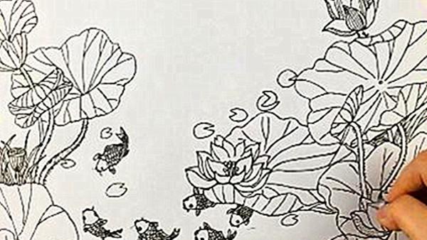 【雅盛美术】教你画线描《荷花池》适合7岁以上美术爱好者