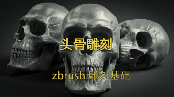 次世代角色基础/头骨结构/Zbrush技巧讲解