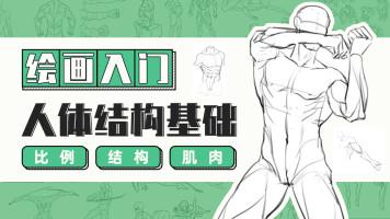 【绘画入门】人体结构基础  学绘画