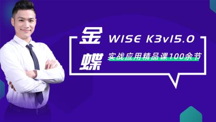 金蝶WISE K3v15.0实战入门到精通/100余节/系统化录制【最新】