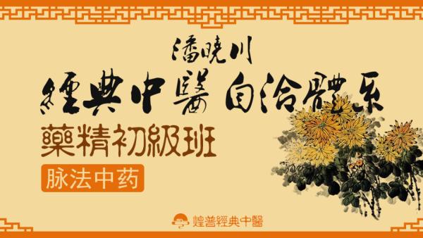 潘晓川经典中医自洽体系药精初级班(脉法中药)