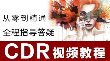CDR CorelDRAW 视频教程课 平面设计培训 广告包装logo海报 全套