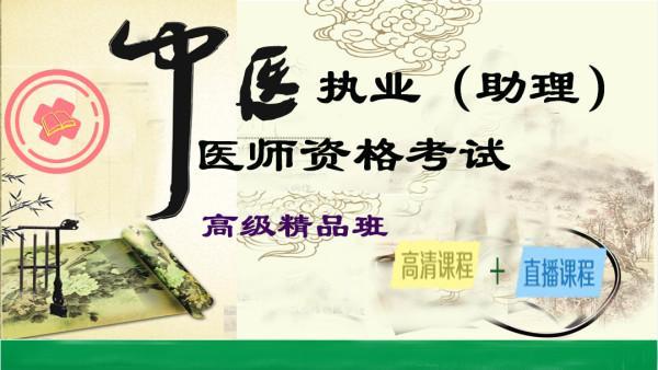 2017年中医执业(含助理)医师资格考试基础精讲班 中医基础精讲