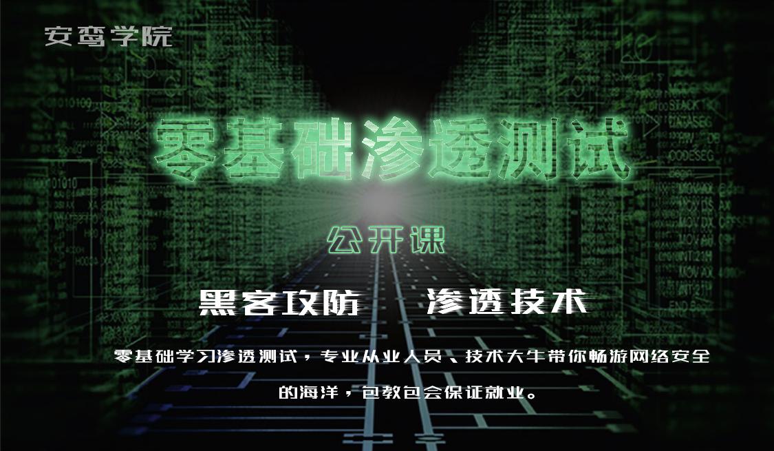 零基础web渗透测试/安全维护/黑客技术揭秘/seo/信息安全
