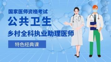 国家医师资格考试【综合笔试】乡村全科执业助理医师(公共卫生)
