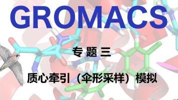 GROMACS专题三:质心牵引(伞形采样)