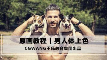 男人体上色丨原画CG教程丨CG角色设计丨CGWANG王氏教育集团