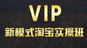 VIP 0基础打造爆款运营核心课【宇娃娃电商】