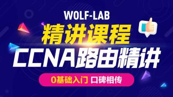 5IE讲师,CCNA网络工程师速成之路由综合讲授CCNA/HCIA/CCNP/HCIP