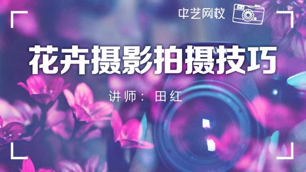 【摄影】花卉摄影技法及荷花摄影/田红/摄影录播/中艺