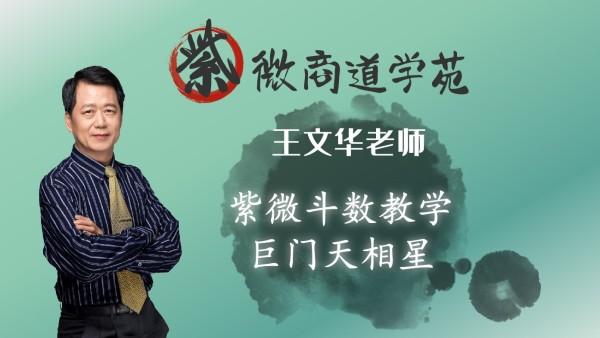 08王文华老师紫微斗数初级篇-巨门天相星